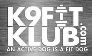 Stay fit with K9 Fit Klub, Dog Daycare in the Toledo area!