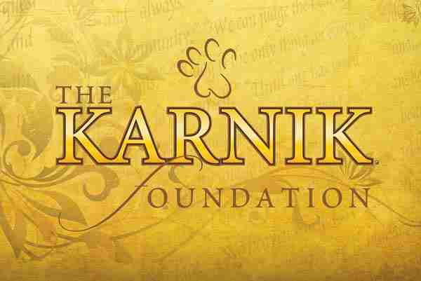 Karnik Foundation