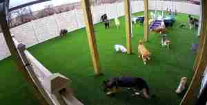Outdoor Daycare 2