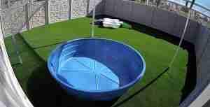 Play Yard 2